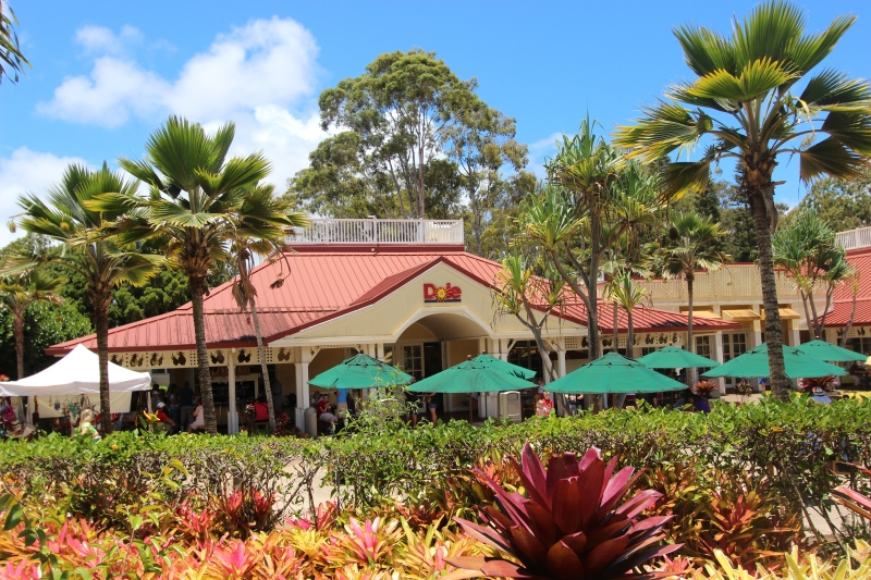 Picture of the day: Dole Plantation outside Honolulu