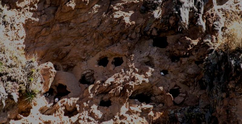 sacretValley-cavegrave