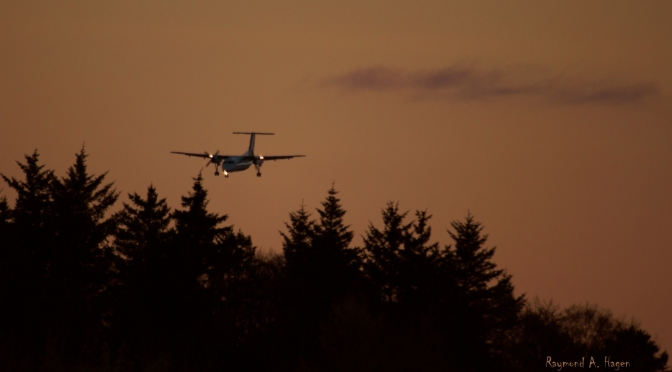 Picture of the day: Plane going to land